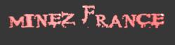 Wiki MineZ France !