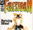 Firestorm Vol 3 2
