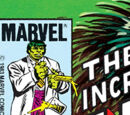 Incredible Hulk Vol 1 294