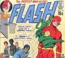 The Flash Vol 1 201