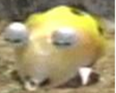 Betayellowbulborb.PNG