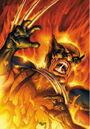 Wolverine Firebreak Vol 1 1 Textless.jpg