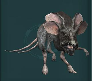Always Wondered What A Womp Rat Looked Like Starwars They reproduce at a staggering rate and are known to stalk urban alleyways and remote. reddit