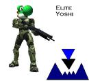Elite Yoshi.PNG