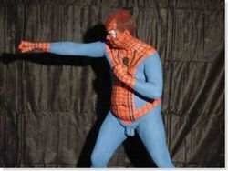 Spiderman cosplay stupido