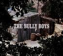 Episode 309: The Bully Boys
