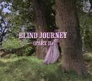 Episode 513: Blind Journey (Part 2)