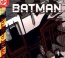 Batman Vol 1 561