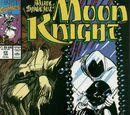 Marc Spector: Moon Knight Vol 1 22