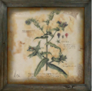 Decorative Painting botanical.png