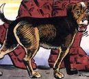 Dogg (Dakotaverse)