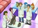 EP470 Los ayudantes junto a otros Pokémon.png