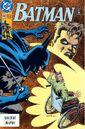 Batman 480.jpg