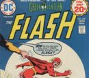 The Flash Vol 1 228