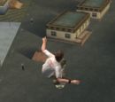 Tony Hawk's Underground gaps