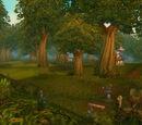 Bosque de Elwynn
