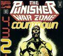 Punisher: War Zone Vol 1 41