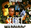 Secret Warriors Vol 1 1