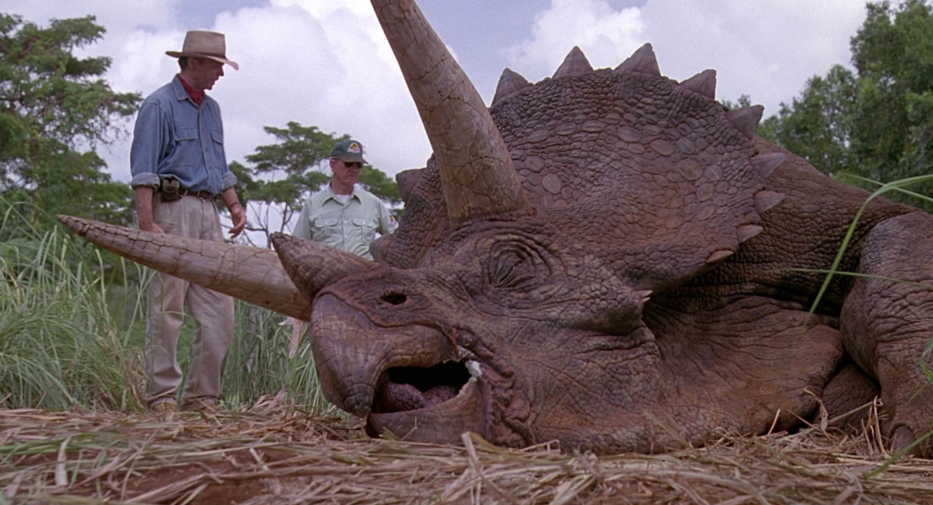 Triceratops Facts for Kids, Students and Adults