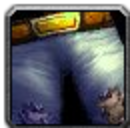 Inv pants cloth 04.png
