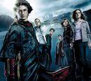 Harry Potter et la Coupe de Feu (film)