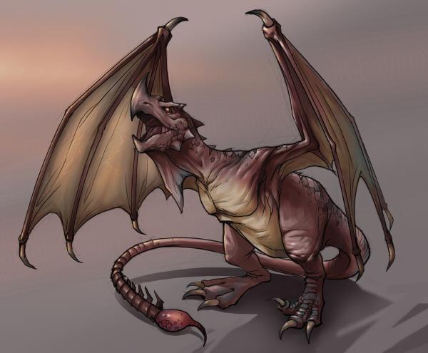 Wyvern Dragon: Wyvern (Dragonology)