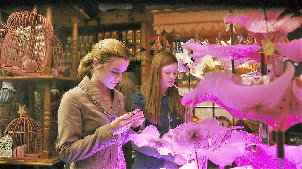 Jeu des images (version HP) - Page 4 Hermione_and_Ginny_at_the_Weasley's_Wizard_Wheezes_Shop