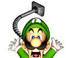 Luigi's Castle