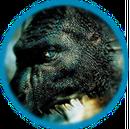 Icon-Drachen.png