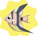 Altum-Angel-Fish.png