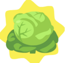 HG-Cabbage.png