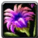 Inv misc flower 04.png