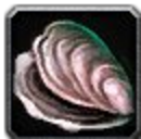 Inv misc shell 02.png