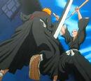 Ichigo Kurosaki vs. Ikkaku Madarame