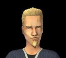 Sims de Aurora Skies