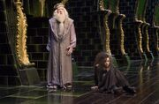 Albus Dumbledore and Bellatrix Lestrange (Order of the Phoenix movie)