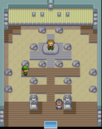 FRLG Pewter Gym.png