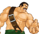 Mike Haggar