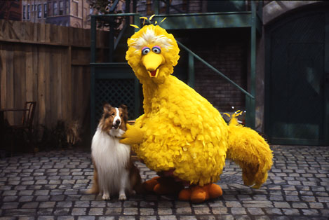 Lassie - Muppet Wiki