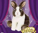 Signature Dutch Bunny