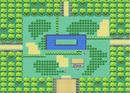 Pokemon-FL-SafariZone-CenterArea.png