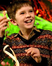 Charlie Bucket - Charlie and the Chocolate Factory Wiki