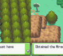 Pokémon HeartGold and SoulSilver (Part 4)