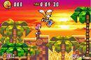 Sonic-advance-3-200405071011371 640w.jpg