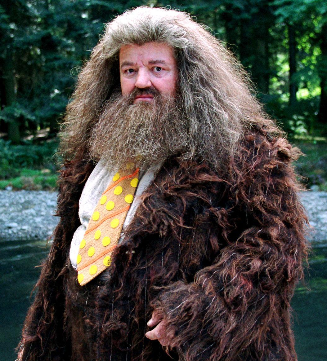 Rubeus Hagrid S Dress Robes Harry Potter Wiki
