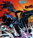 Batman Blue Grey Bat 009.jpg