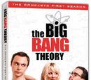 TBBT: La Primera Temporada Completa en DVD