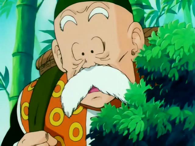 Grandpa gohan dragon ball wiki wikia - Gohan dragonball gt ...