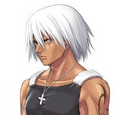 Raiden Hirameki