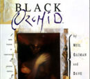 Black Orchid (Collected)